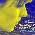 Wild Elusive Butterfly
